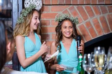 DLP-Gonelli-Wedding-0274