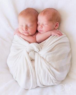 dlp-brown-twins-4921