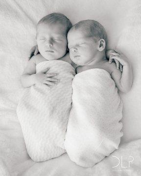 dlp-brown-twins-4948