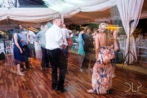 dlp-biscarini-wedding-6978