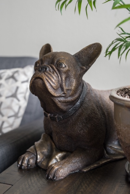 A french bulldog becomes alert from laying down in the bronze 'French Bulldog'