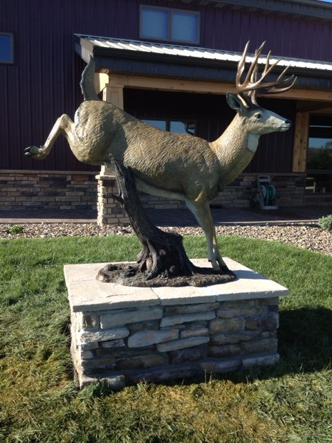 A life-sized bronze of a white tail deer.