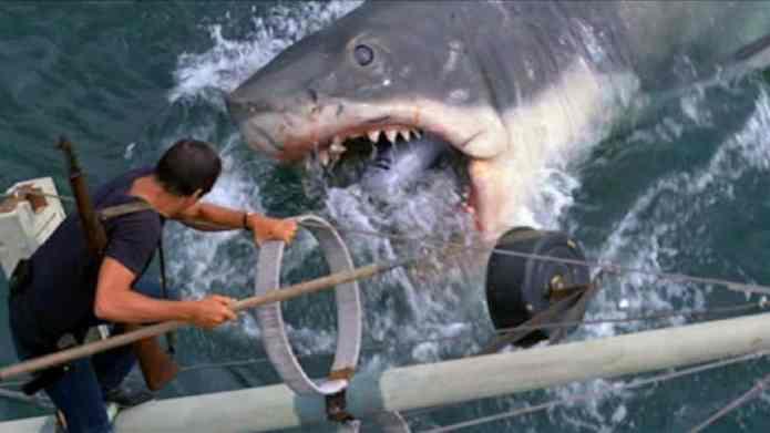8 dintre cele mai terifiante atacuri ale rechinilor albi