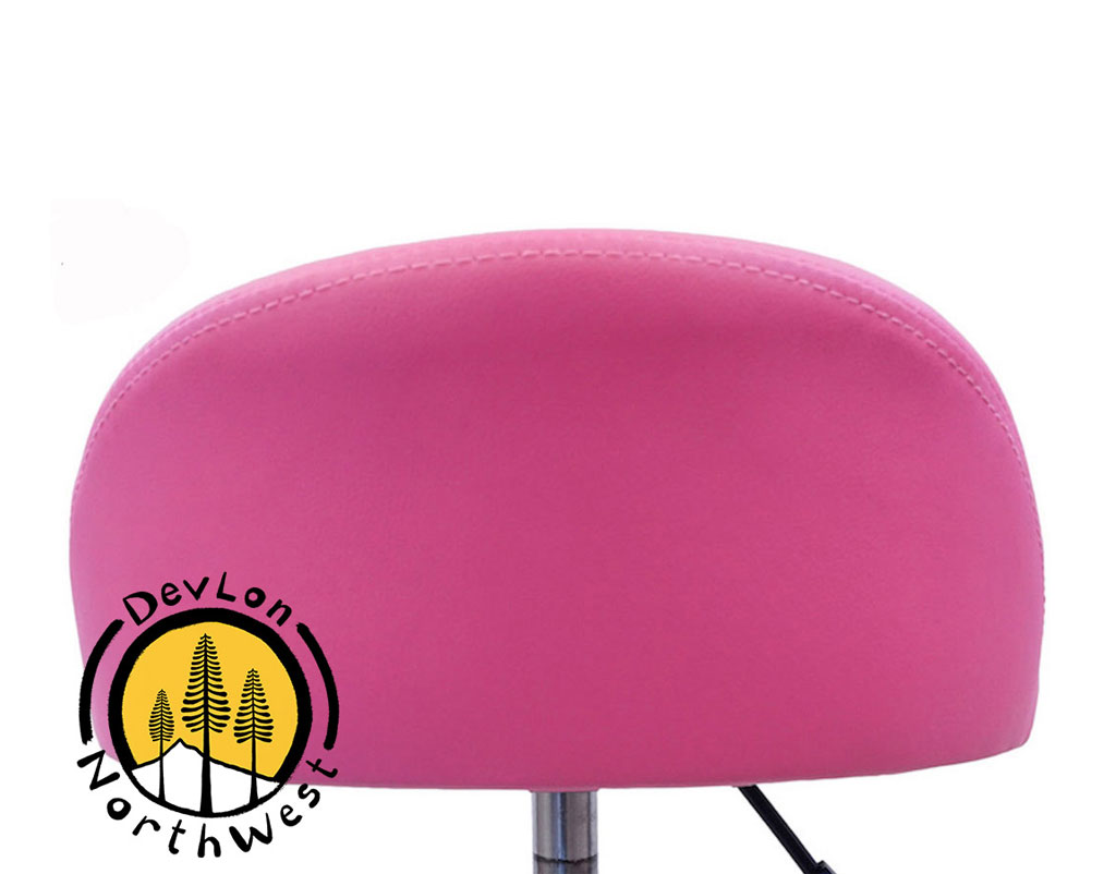 Phenomenal Salon Stool With Back Rest Saddle Hydraulic Spa Stool Pink Gmtry Best Dining Table And Chair Ideas Images Gmtryco