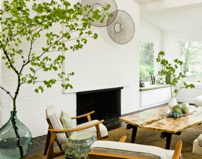 Thursday Thirteen: Indoor Plants That Improve Your Overall Air Quality