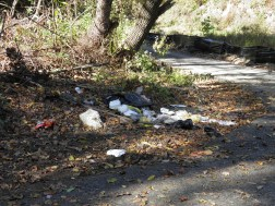 Illegal dumping of trash