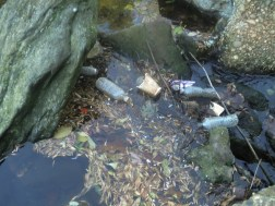Creek trash - bottles, cups from upstream litter carried to Creek during rain storms