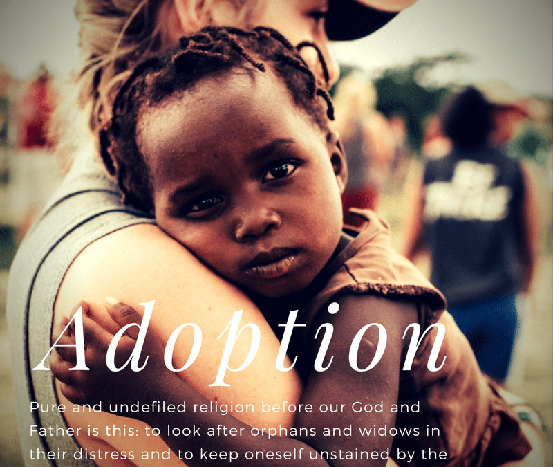 Adoption Series: Day 1