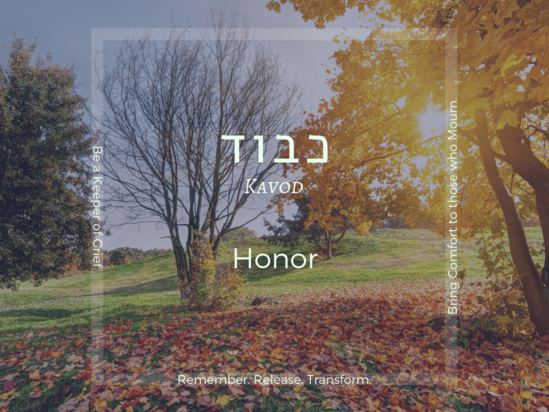 Kavod: Honor - Soul-trait of Cheshvan words over image of autumn trees with bright sunlight
