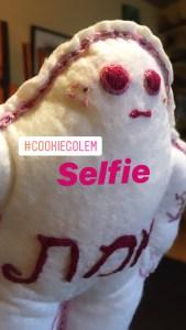 Cookie Golem/et #3 taking a selfie