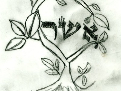 A hand drawn image of Asher written in Hebrew in the center of the branches of a tree