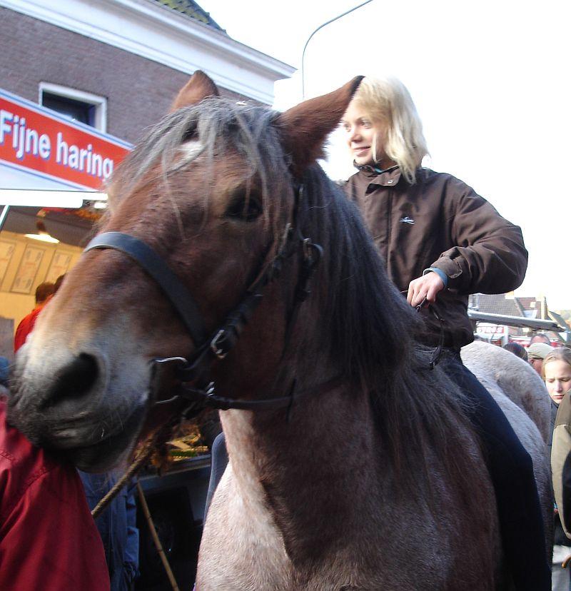 zuidlaardermarkt Horse fair art 26