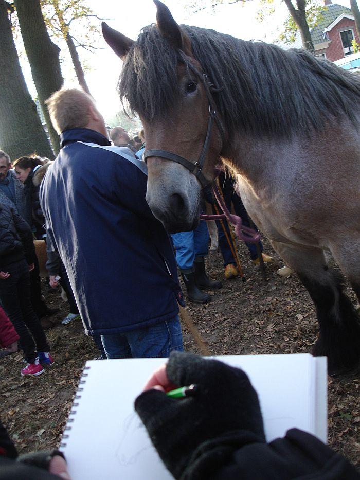 zuidlaardermarkt Horse fair art 37