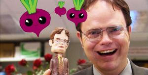 Dwight Schrute Quiz