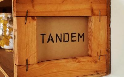 TANDEM-INGLE