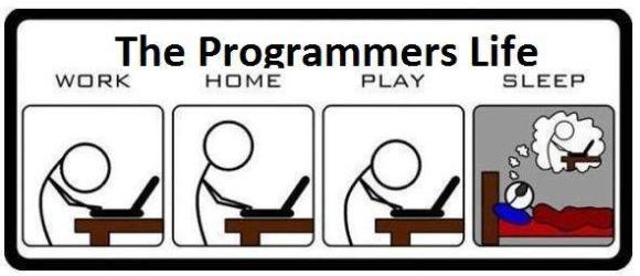Coder vs programmer kehidupan programmer
