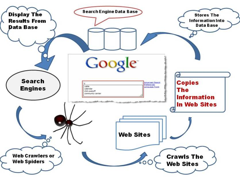 How Google Search Result Works