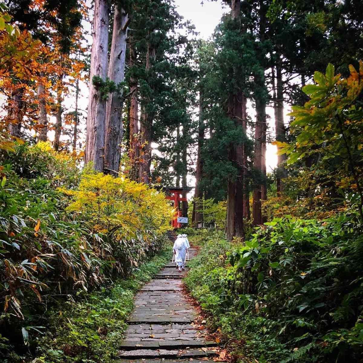 Yamabushi Training on Mt. Haguro