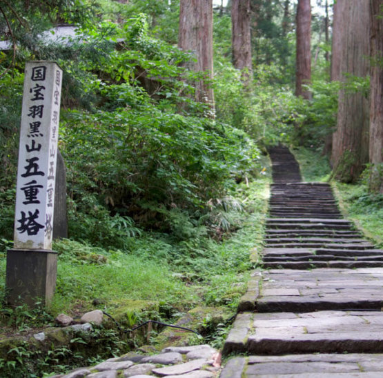 Stone Steps up Mt. Haguro of the Dewa Sanzan that Matsuo Basho would have climbed