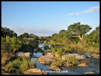 View over the Sabie River
