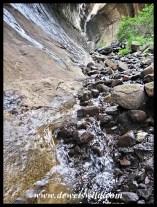 Small mountain stream flowing through the ravine