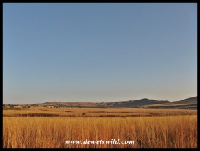 A view over the central plateau and vlei