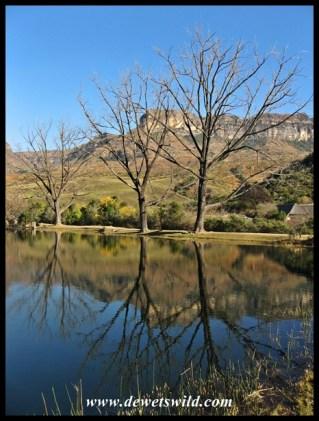 Reflections at Mahai