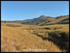 Rugged Glen scenery