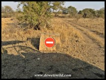 Turning into the Sweni wilderness