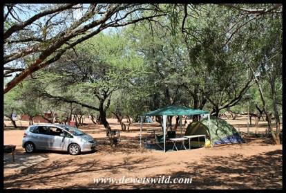 Camping at Bakgatla, Pilanesberg National Park, February 2016