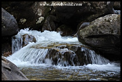 The cascades trail
