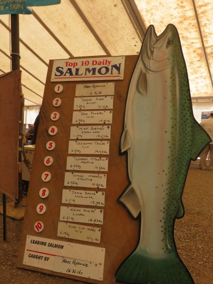 Leader Board - Top 10 daily salmon