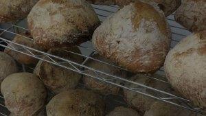 bread_header bread_header