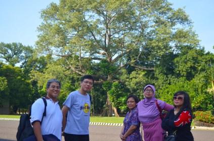 Di depan lapangan upacara. Pohon besar itu sudah ada sejak dulu.