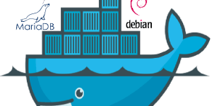 illustration of the combination of services for suitecrm in docker