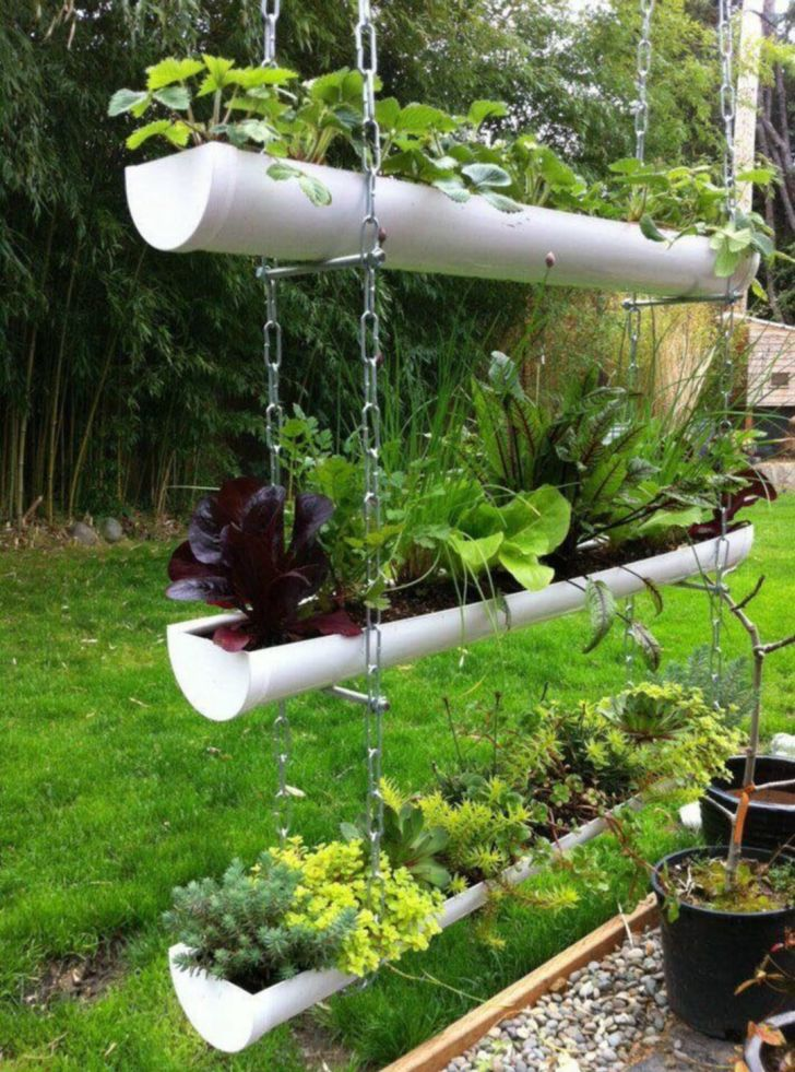 Great Ideas To Grow Plants In Pvc Tubes