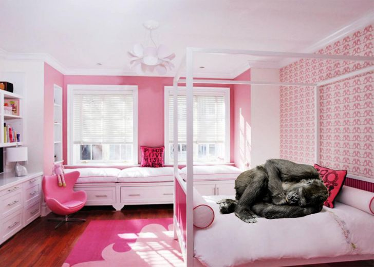 35+ Pink Girly Bedroom Color Schemes That Will Make ...