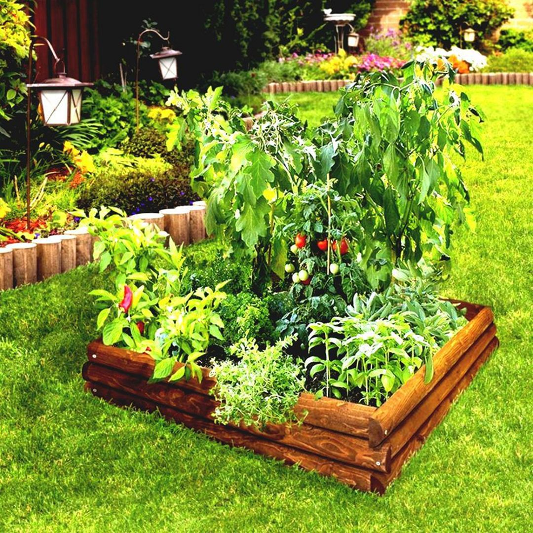 35 Advantageous Small Vegetable Garden Ideas for Your ...