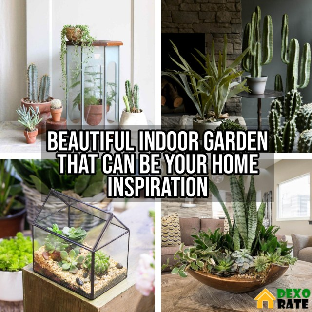 Beautiful Indoor Garden That Can Be Your Home Inspiration