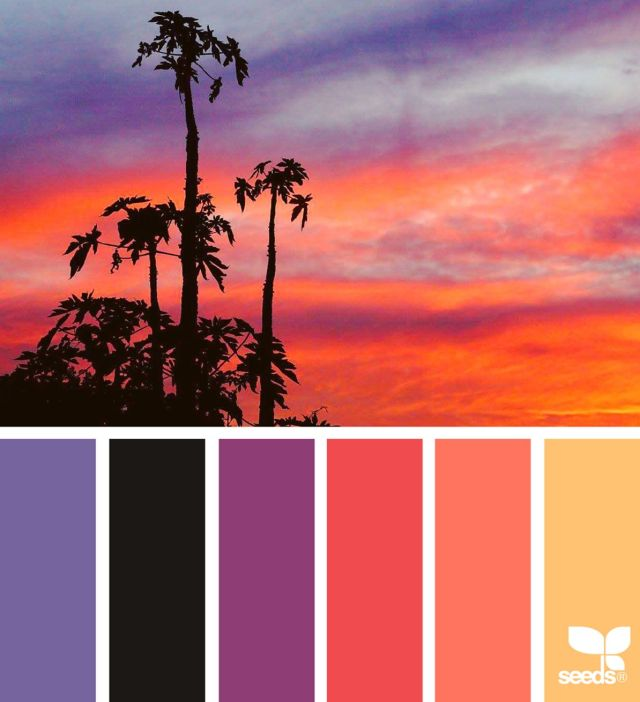 Sunset Brights Sunset Color Palette