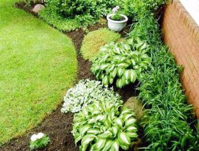 Side House Garden Landscaping Decoration Ideas