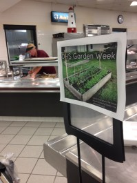 Produce from school garden served in DHS school salad bar.