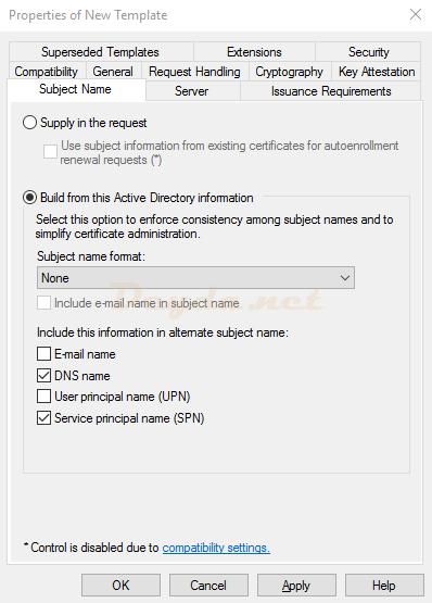 Duplicate Template Subject Name DNS name Service principal name (SPN)