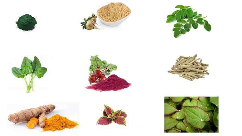 Man Greens Ingredients list
