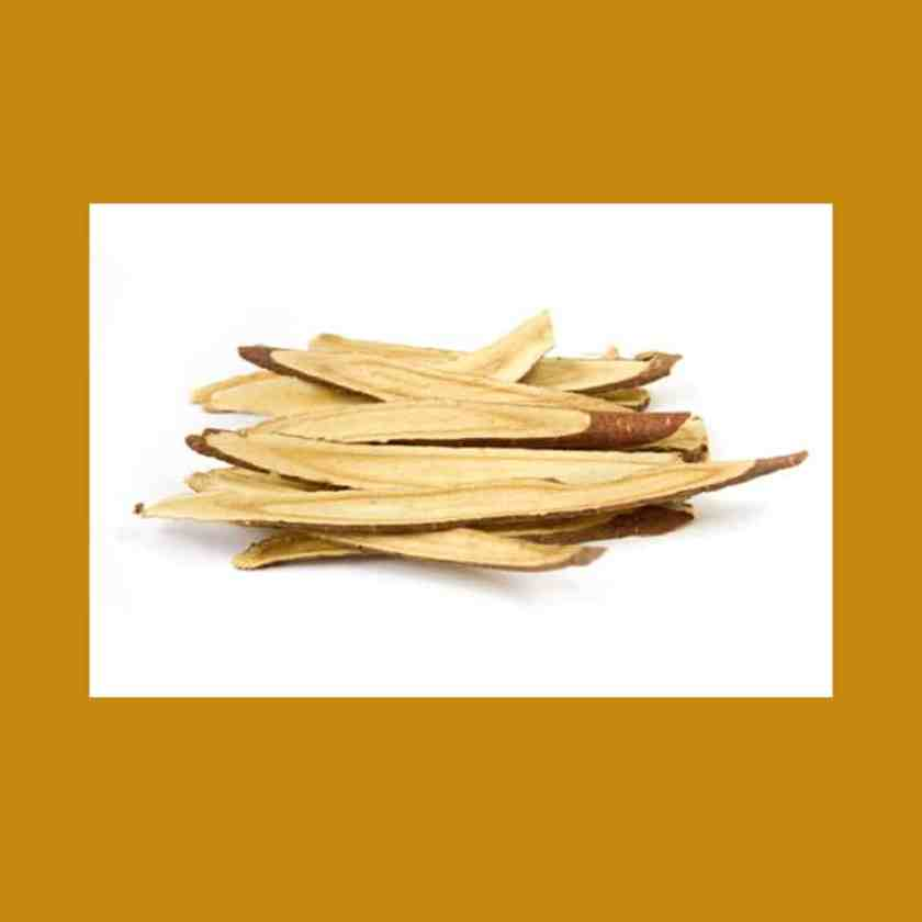 Astragalus Root-Noctalean Review