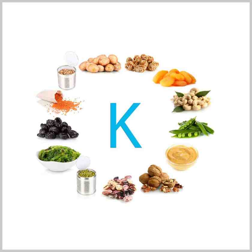 Potassium-Lion HRT Supplement Review-ingredients