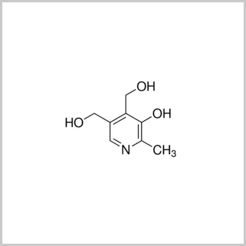 Vitamin B6-Lion HRT Supplement Review-ingredients