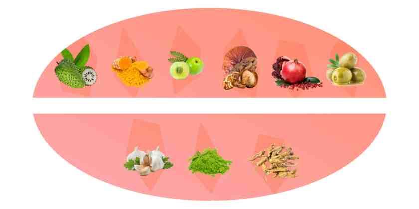 Restolin ingredients
