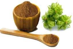 Tribulus Terrestris Fruit Extract
