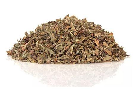Damiana – Leaf Extract